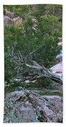 Weathered Cedar Overlooking The Castor River Bath Towel