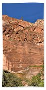 Weeping Rock In Zion National Park Hand Towel