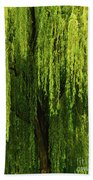 Weeping Willow Tree Enchantment  Bath Towel