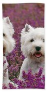 West Highland Terrier Dogs In Heather Bath Towel