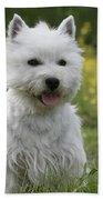 West Highland White Terrier Bath Towel