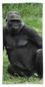 Western Lowland Gorilla Female Bath Towel