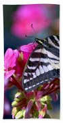 Western Tiger Swallowtail Butterfly On Geranium Bath Towel