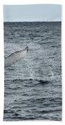 Whale Of A Time Bath Towel