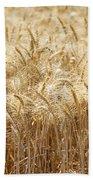 Wheat Field  Bath Towel