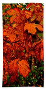 Where Has All The Red Gone - Autumn Leaves - Orange Bath Towel