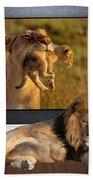 While The Lion Sleeps Tonight Bath Towel
