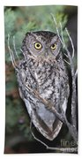 Whiskered Screech Owl Bath Towel