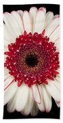 White And Red Gerbera Daisy Bath Towel