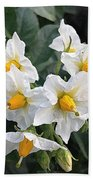 Garden Blossoms White And Yellow Garden Blossoms Bath Towel