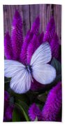 White Butterfly On Flowering Celosia Bath Towel