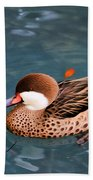White-cheeked Pintail Bath Towel