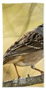 White-crowned Sparrow Pictures 63 Bath Towel