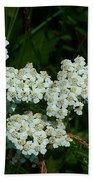 White Flowers In Green Field Bath Towel