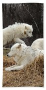 White Furs Bath Towel