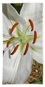 White Lily Bath Towel