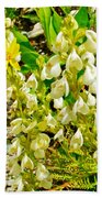 White Locoweed On Highline Trail In Glacier National Park-montana Bath Towel