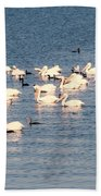 White Pelicans Bath Towel