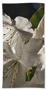 White Rhododendron B Bath Towel