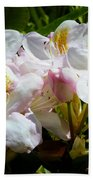 White Rhododendron In Sunlight Bath Towel