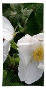White Roses Bath Towel