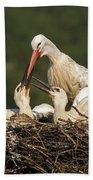 White Stork Bath Towel