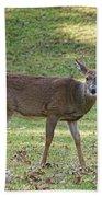 White Tail Deer Bath Towel