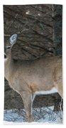 White-tailed Deer Bath Towel