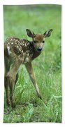 White-tailed Deer Fawn Meadow Bath Towel