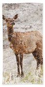White Tailed Deer In Snow Bath Towel
