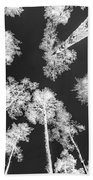 White Trees Bath Towel
