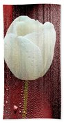 White Tulip On Red Bath Towel