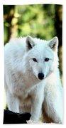 White Wolf Bath Towel
