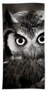 Whitefaced Owl Bath Towel