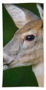 Whitetail Deer Bath Towel