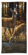 Whitetail Deer - Autumn Innocence 1 Hand Towel by Crista Forest