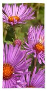 Wild Asters Bath Towel