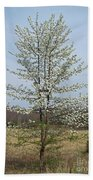 Wild Cherry Tree In Spring Bloom Bath Towel