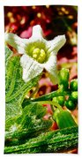 Wild Cucumber In Park Sierra Near Coarsegold-california  Bath Towel