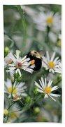 Wild Daisies And The Bumblebee Bath Towel