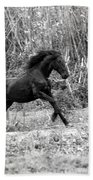 Wild Bath Towel