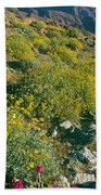 Wild Flowers, Anza Borrego Desert State Bath Towel