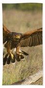 Wild Harris Hawk Landing Bath Towel