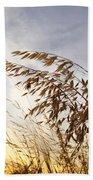 Wild Oats 2am-110432 Bath Towel