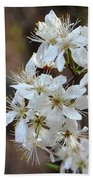 Wild Plum Blooms Bath Towel