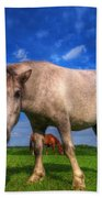 Wild Young Horse On The Field Bath Towel