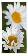 Wildflower Named Oxeye Daisy Bath Towel