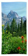 1m9372-v-wildflowers In Cascade Canyon, Tetons Bath Towel