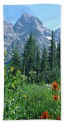 1m9371-h-wildflowers In Cascade Canyon, Tetons Bath Towel