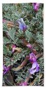 Wildflowers - Woolly-pod Locoweed Bath Towel